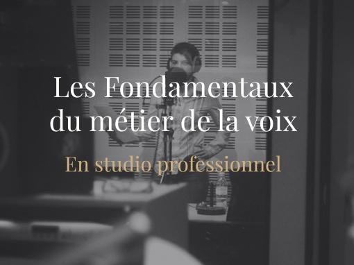 Les Fondamentaux du Métier de la Voix en Studio Professionnel Publicité et Documentaire