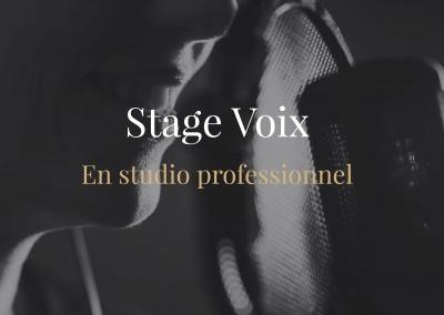 Stage voix en studio professionnel -Voix off Techniques et interpretation de la voix enregistrée en studio